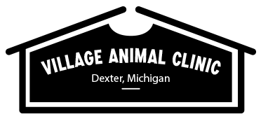 Village Animal Clinic of Dexter | Dexter Veterinary Clinic